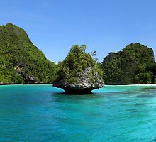 Islet at Wayag by Dr Andy Lewis