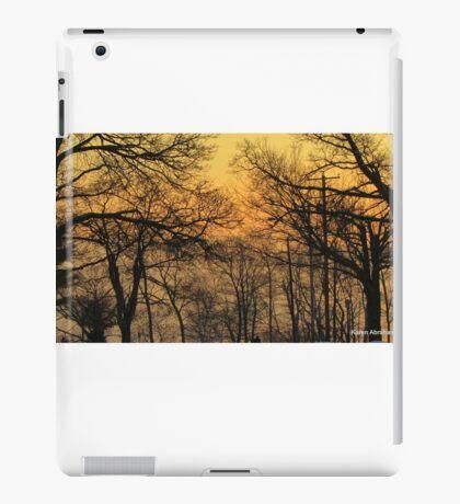 Sheboygan Wisconsin, Sunrise on 2-9-2014 iPad Case/Skin