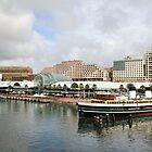 Darling Harbour, Sydney, Australia by Lisa Williams