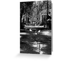 Alley Cats Greeting Card