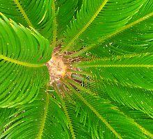 Atlas Travel palmtree phone case by AnaCanas