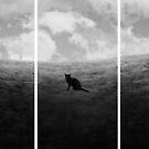 Searching  by Amanda  Cass