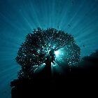 Silhouette at Misool by Dr Andy Lewis