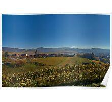 Burkheim, Kaiserstuhl - yet another view of the castle Poster