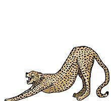 Cheetah by Emi Brown