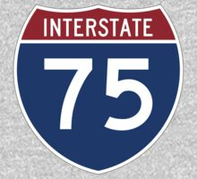 Interstate 75 by cadellin