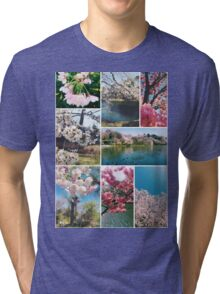 Beautiful Sakura Cherry Blossoms Park Pond Garden Spring Tri-blend T-Shirt