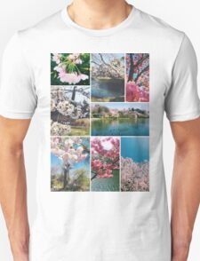 Beautiful Sakura Cherry Blossoms Park Pond Garden Spring T-Shirt