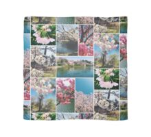 Beautiful Sakura Cherry Blossoms Park Pond Garden Spring Scarf