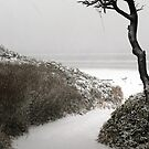 It Snowed At The Beach by Annie Underwood