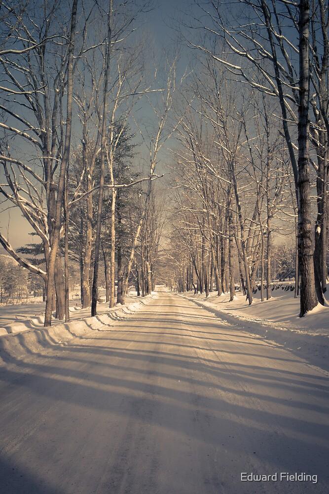 Country Road in Winter by Edward Fielding