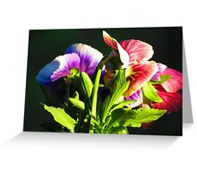 Garden Flowers Greeting Card