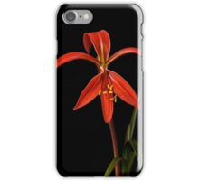 Fire Lily iPhone Case/Skin