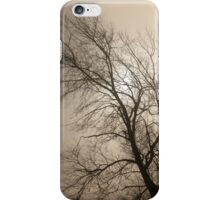 Tracery iPhone Case/Skin