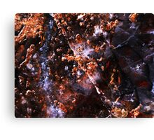 Demolition Derby (Pietersite) Canvas Print