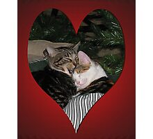 Happy Valentine's Day 2014 from Mickey and Moire Photographic Print