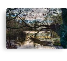 St Catherine's Pond Canvas Print