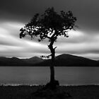 Loch Lomond by scottalexander