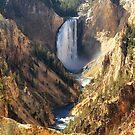 Yellowstone Canyon by Ann  Van Breemen