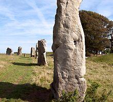Avebury neolithic stones by Martyn Franklin