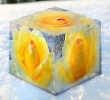 Frozen Yahtzee by Iva Penner