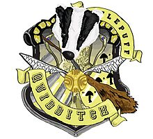 Hufflepuff Quidditch Pride Photographic Print
