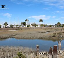 Galilee Harbor wetlands by 2Canons