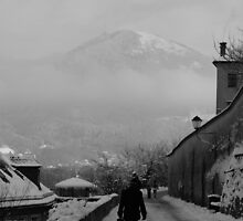 Winter Walk by LCarmody