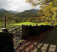 Loughrigg Lane by English Landscape Prints