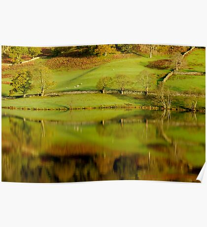 Rydal Water Reflections Poster