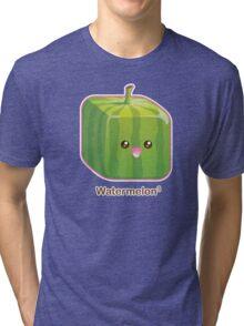 Cute Square Watermelon Tri-blend T-Shirt