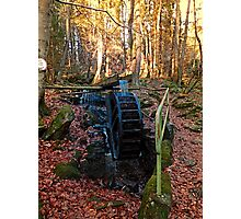 Water wheel in the wood | architectural photography Photographic Print