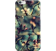 Vintage Blossoms - Triptych iPhone Case/Skin