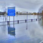 The Thames In Flood - Walton Bridge ! by Colin  Williams Photography