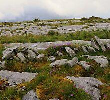 The Burren in West Clare Ireland by Sean  Carroll
