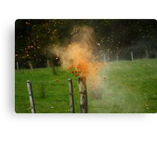 Exploding Can Canvas Print