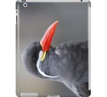 Inca Tern iPad Case/Skin