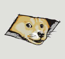 Ceiling Doge by jimiyo