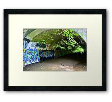 Graffiti in a tunnel Framed Print