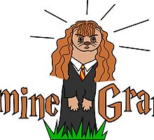 Hermine Granger by SixApple
