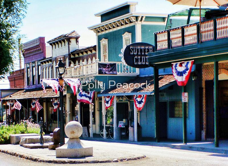 Folsom, California by Polly Peacock