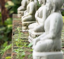 buddhas by Anne Scantlebury