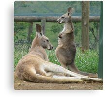 Do I Have A Pouch Mum? Canvas Print