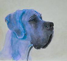 Zoe by Doggenhaus
