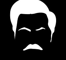 RON SWANSON by Danny  Porter