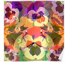 Colourful Pansies Poster