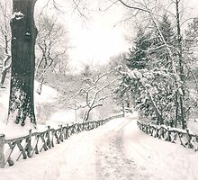 Central Park Winter Path by Vivienne Gucwa
