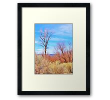 Tranquil Valley View Framed Print