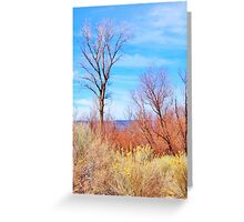 Tranquil Valley View Greeting Card