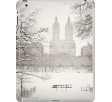 Suspended - Central Park - Winter  iPad Case/Skin